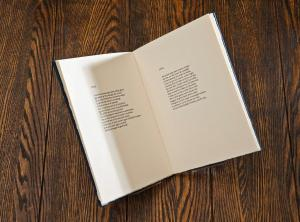 In Dialann/ Diary by Cathal O'Searcaigh, each poem was printed in Irish as written by poet Cathal O'Searcaigh and has an English translation by Denise Blake on the adjacent page.