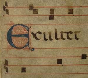 Detail of Summa Azonis, KJA1690 .A3 S87 1498, John J. Burns Library, Boston College.