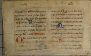 Front cover: close-up of vellum showing hand-written text.