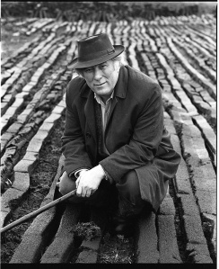 "Seamus Heaney in a turf bog in Bellaghy, bh002808,  MS.2001.039, <a href=""http://www.bc.edu/sites/libraries/hanvey/index.html"">Bobbie Hanvey Photographic Archives</a>, John J. Burns Library, Boston College."