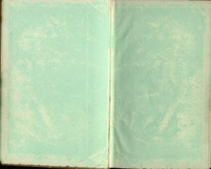 The much disputed green endpapers; note how the color has worn off due to an ineffective hand-coloring method.