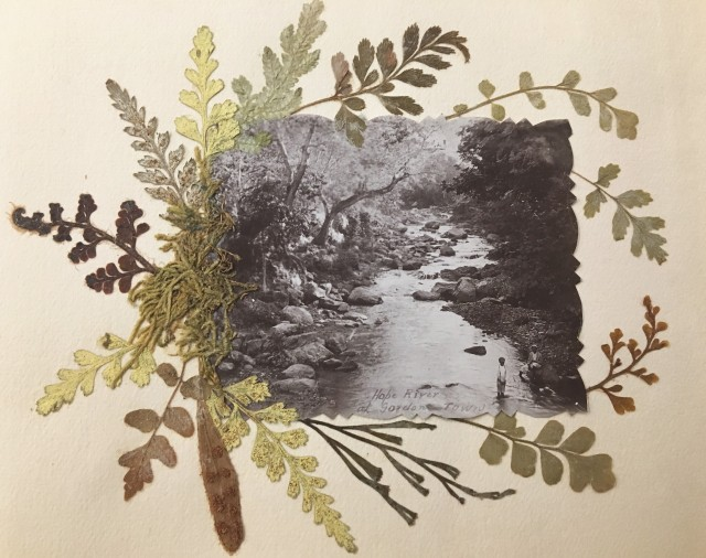 """Close up of black-and-white photograph of an adult and child standing on the banks of a river, captioned """"Hope River at Gordon Town"""". The photograph is surrounded by pressed plant matter."""