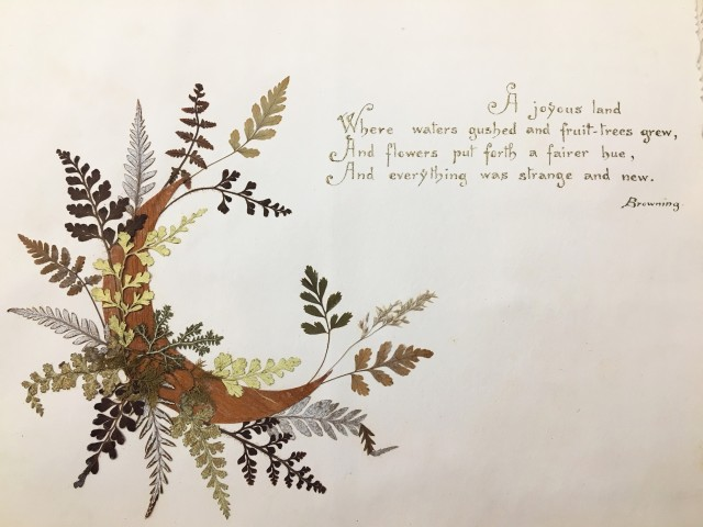 """Close up of page with quote reading, """"A joyous land/Where waters gushed and fruit-leaves grew,/And flowers put forth a fairer hue,/And everything was strange and new. Browning."""" Accompanied by a crescent moon made of a leaf or wood and pressed plants."""
