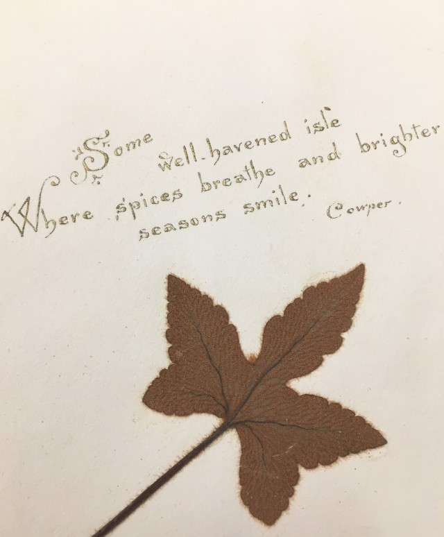 """Close up of page reading """"Some well-havened isle/Where spices breathe and brighter seasons smile. Cowper,"""" accompaniedby pressed leaf."""