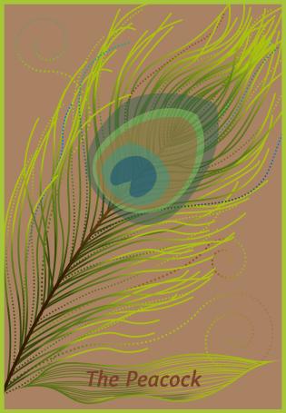 The Peacock tarot card