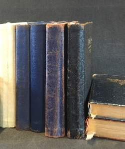Image of Fitzgerald's Line-A-Day diaries